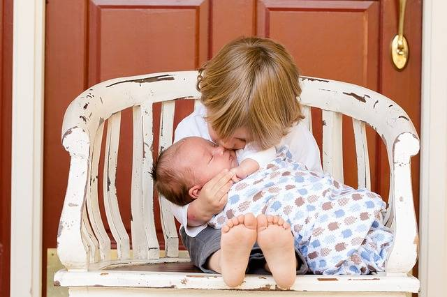 Brothers Boys Kids - Free photo on Pixabay (470493)