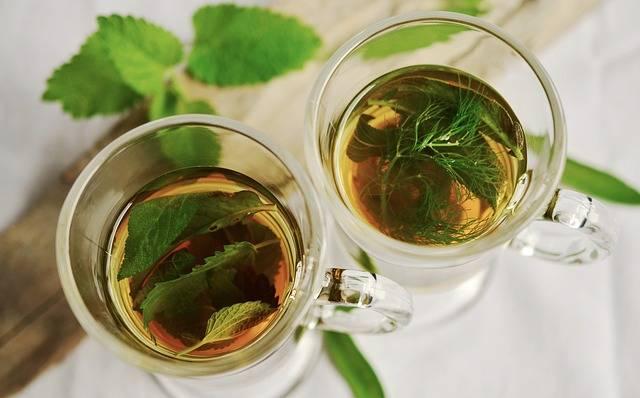 Herbal Tea Herbs Tee - Free photo on Pixabay (471682)