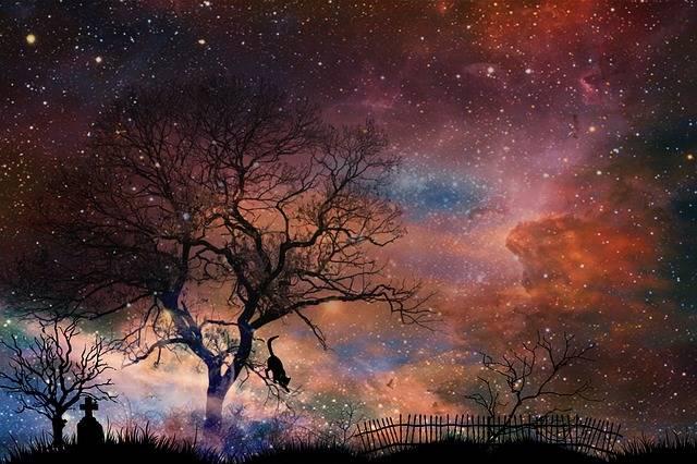 Tombstone Cemetery Trees - Free photo on Pixabay (471812)