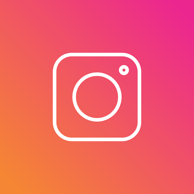 Instagram Insta Logo - Free vector graphic on Pixabay (473180)
