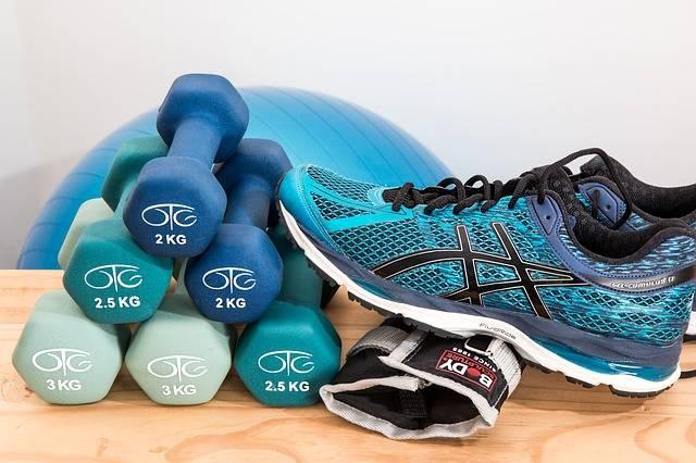 Dumbbells Training Fitness - Free photo on Pixabay (474442)