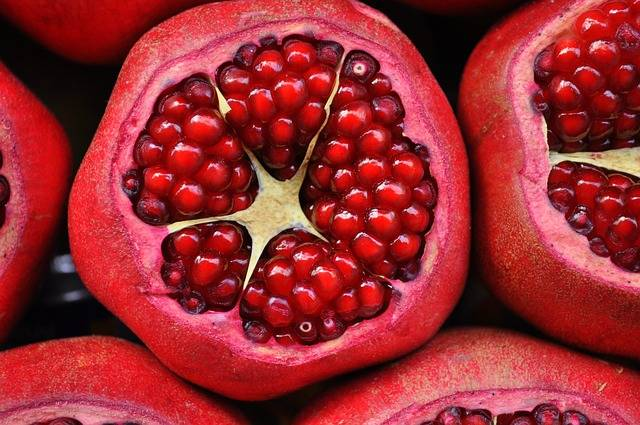 Pomegranate Exotic Fruit - Free photo on Pixabay (476438)