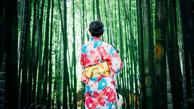 Bamboo Trees Girl Kimono - Free photo on Pixabay (480205)