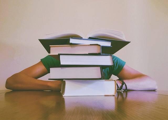Books Student Studying - Free photo on Pixabay (481066)