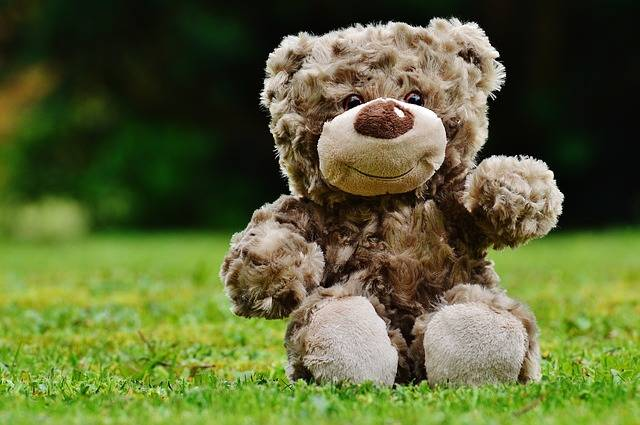Teddy Soft Toy Stuffed Animal - Free photo on Pixabay (481569)
