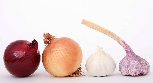 Food Onions Garlic - Free photo on Pixabay (483703)