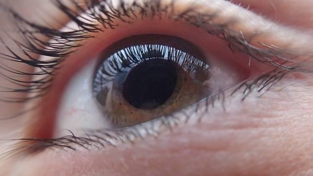 Eye Human Face - Free photo on Pixabay (493853)