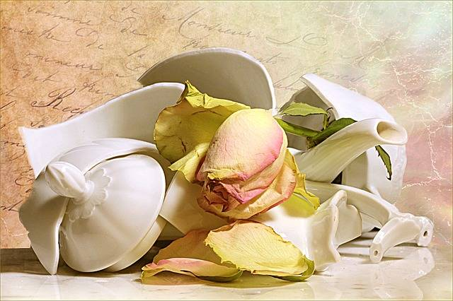 Still Life Jug Broken Withered - Free photo on Pixabay (494055)