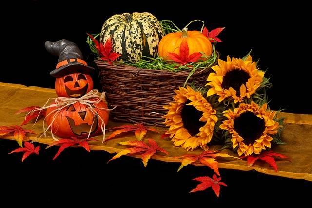 Autumn Black Dark - Free photo on Pixabay (502317)