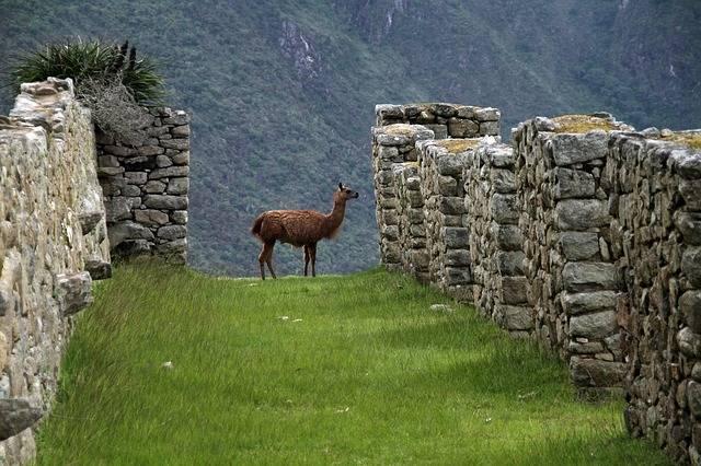 Machu Picchu Peru Inca - Free photo on Pixabay (506084)