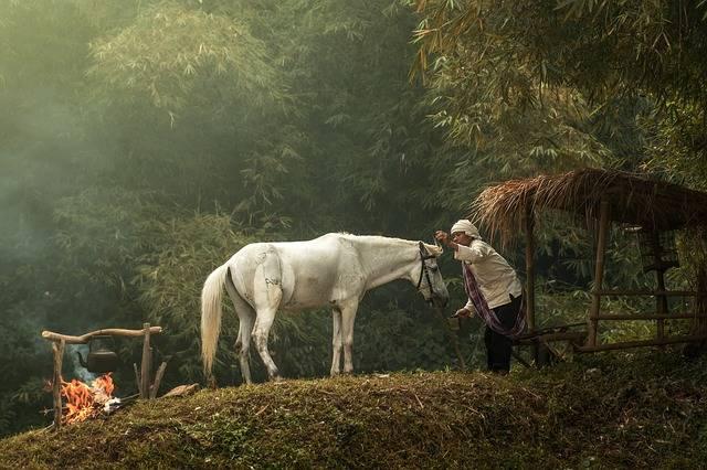 Village Asian People - Free photo on Pixabay (506100)