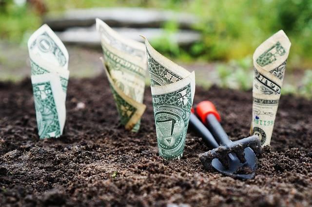 Money Grow Interest - Free photo on Pixabay (510343)