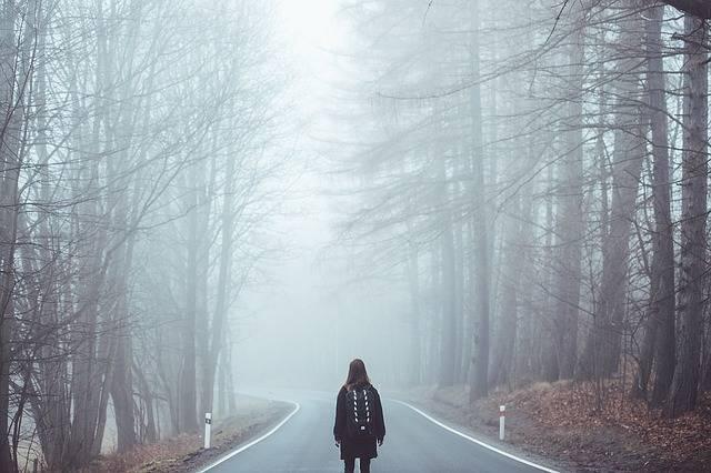 Fog Mist Road - Free photo on Pixabay (510658)