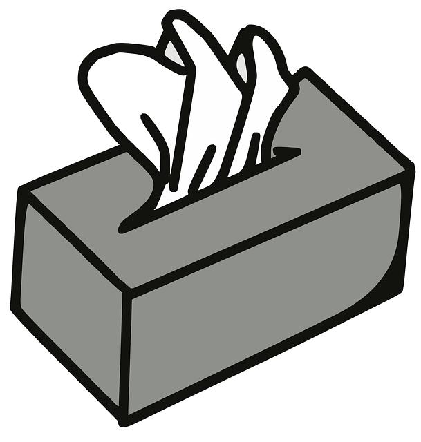 Napkin Box Paper Tissue - Free vector graphic on Pixabay (511814)