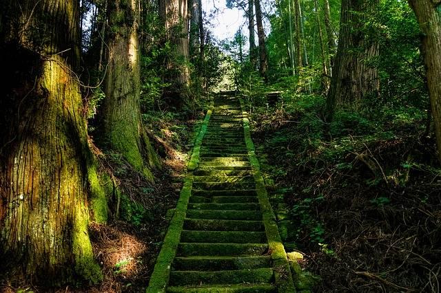 Japan Aso Shrine - Free photo on Pixabay (513563)