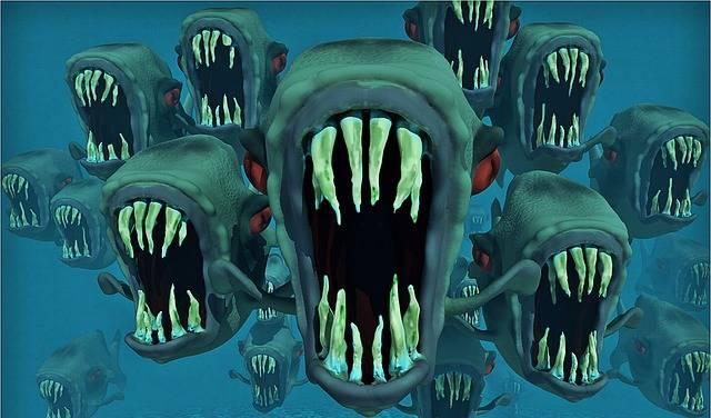 Piranhas Nightmare Fish Swarm - Free image on Pixabay (514566)