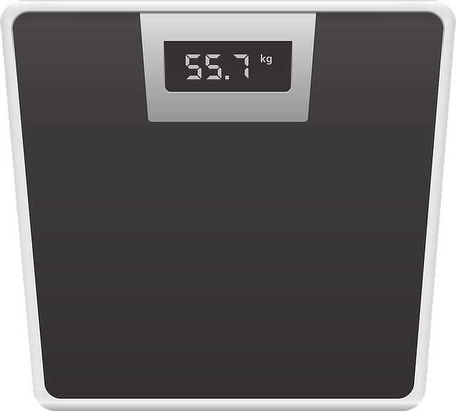 Scale Weigh-In Mass - Free vector graphic on Pixabay (516108)