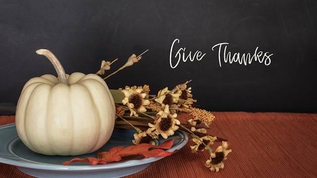 Thanksgiving Fall Pumpkin - Free photo on Pixabay (516273)