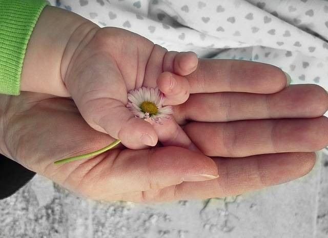 Hands Love Hand - Free photo on Pixabay (516274)