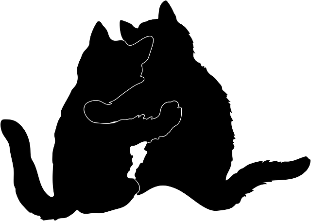 Cat Hugging Silhouette - Free vector graphic on Pixabay (517055)