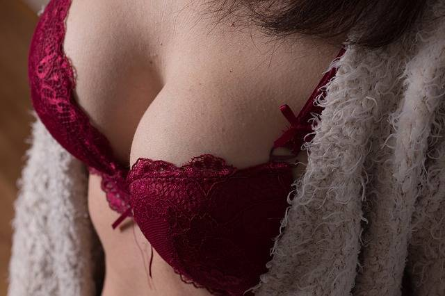 Bra Breasts Boobs - Free photo on Pixabay (518337)