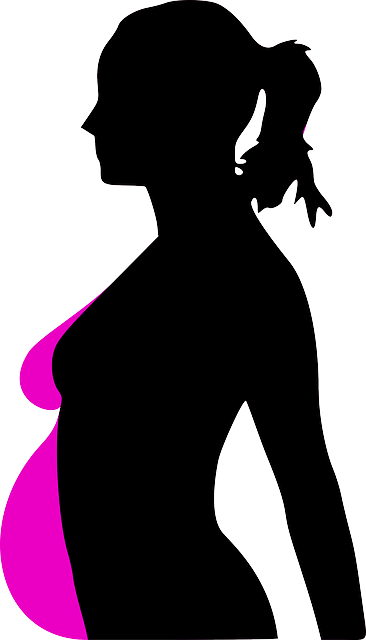 Pregnancy Woman Profile - Free vector graphic on Pixabay (518469)