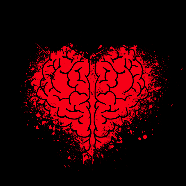 Heart Brain Mind - Free image on Pixabay (519255)