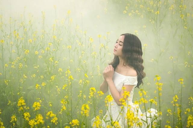 Fog Girl Flowers - Free photo on Pixabay (520918)