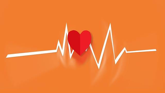 Heart Beat - Free photo on Pixabay (521448)