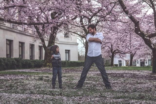 Father Son Family - Free photo on Pixabay (522976)
