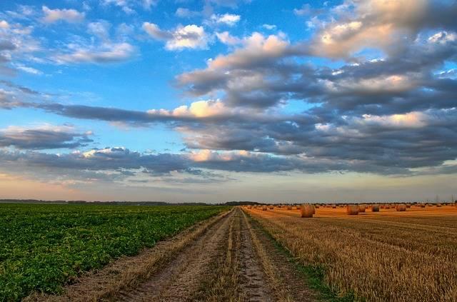 Nature Landscape Field - Free photo on Pixabay (526079)