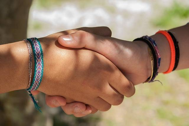 Hi Shaking Hands Friendship - Free photo on Pixabay (528240)