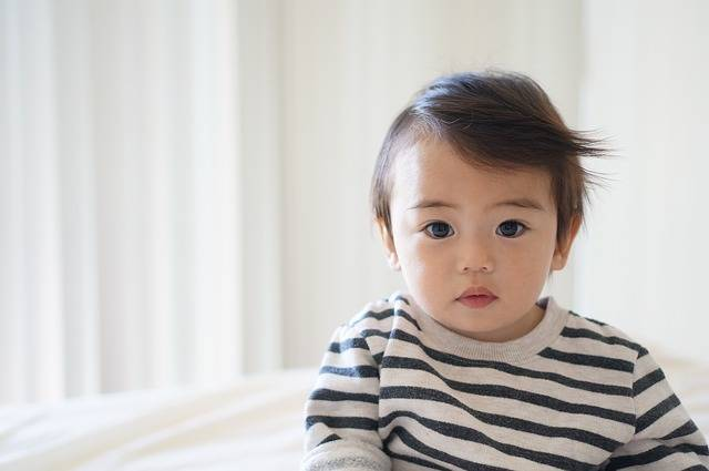 Boy Child Kid - Free photo on Pixabay (530728)