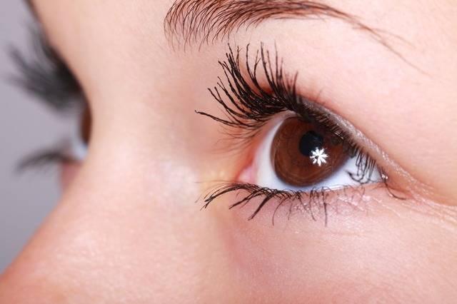 Beautiful Close-Up Eye - Free photo on Pixabay (531423)