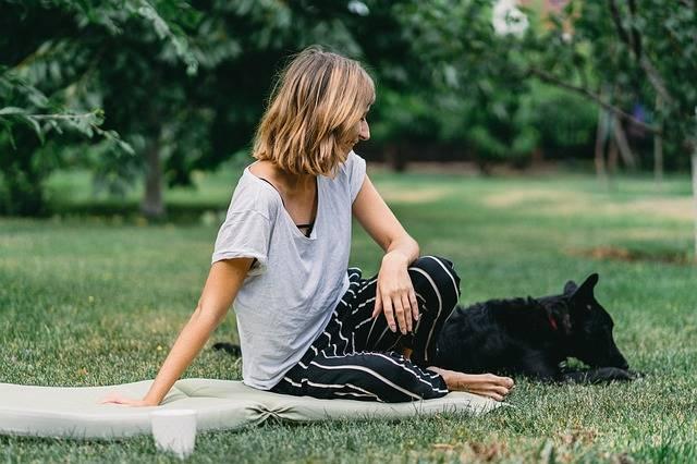 Dog Friend Animal - Free photo on Pixabay (535298)