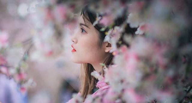 Girl Portrait Sakura - Free photo on Pixabay (537304)