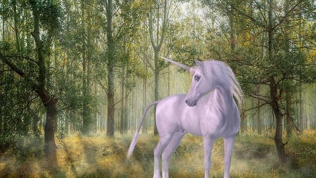 Unicorn Forest Fairy Tales - Free image on Pixabay (539024)