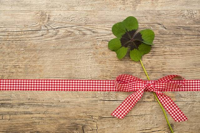 Klee Lucky Clover Luck - Free photo on Pixabay (539029)