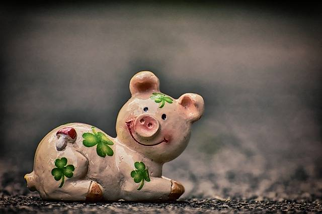 Luck Piglet Lucky Pig - Free photo on Pixabay (539035)