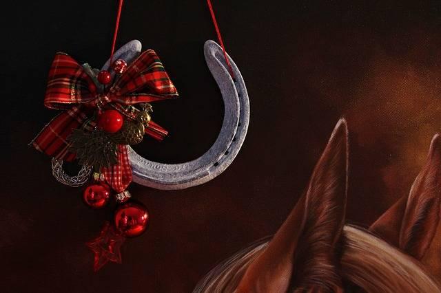 Christmas Horse Horseshoe - Free photo on Pixabay (539039)