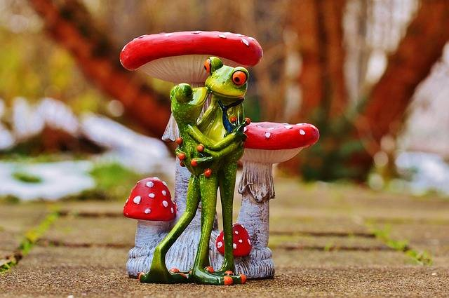 Valentine'S Day Love Frogs - Free photo on Pixabay (539064)