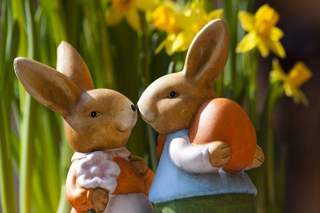 Easter Bunny Rabbit - Free photo on Pixabay (540285)