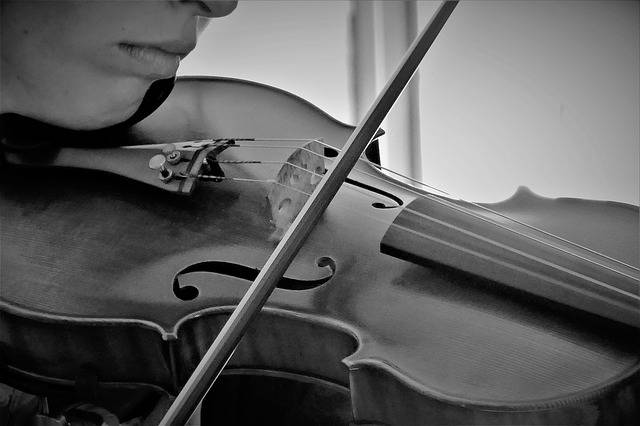 Violin Musical Instrument Music - Free photo on Pixabay (541209)
