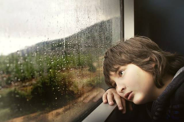 Person Little Boy - Free photo on Pixabay (541503)