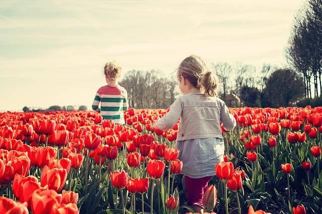 Girls Children Tulips - Free photo on Pixabay (541525)