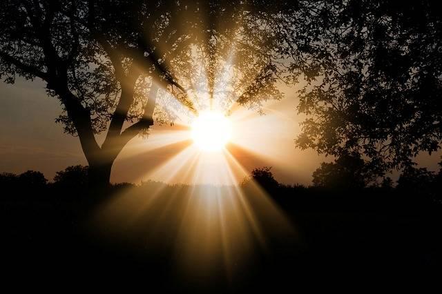 Sun Dawn Nature - Free photo on Pixabay (541561)