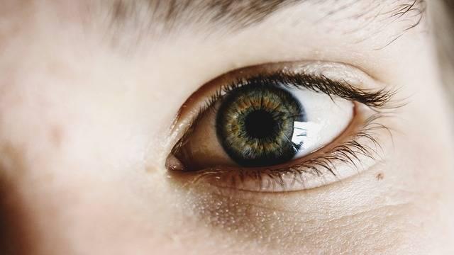 Eyes Green Child - Free photo on Pixabay (541562)