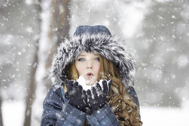 Winter Redhead Female - Free photo on Pixabay (542117)