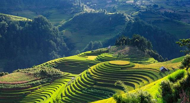 Scenery Silk Terraces Mu Cang Chai - Free photo on Pixabay (546665)
