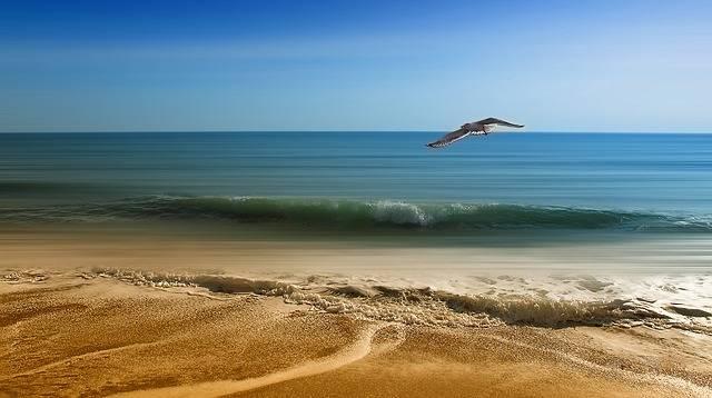 Sea Vacancy Sand - Free photo on Pixabay (546694)